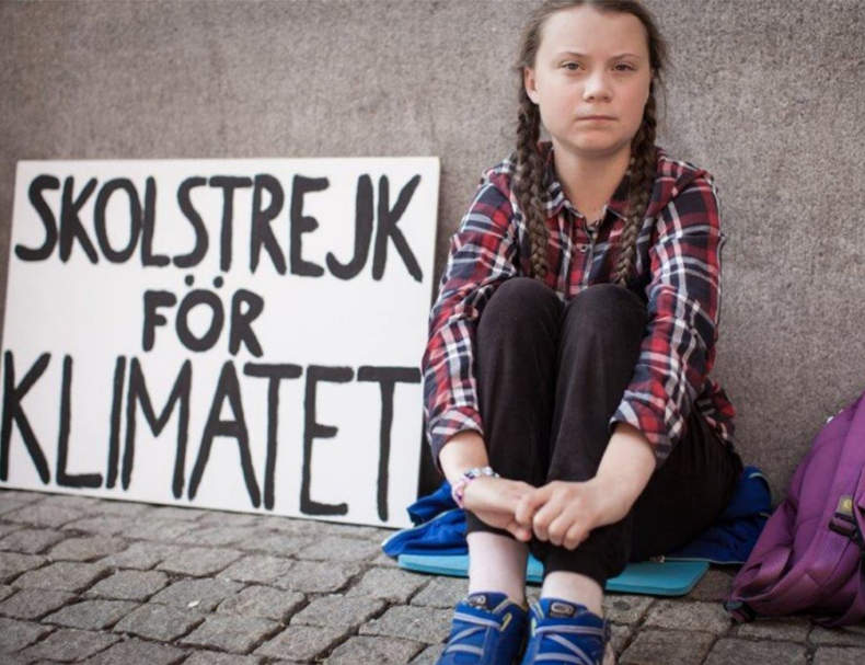 The Greta Thunberg effect